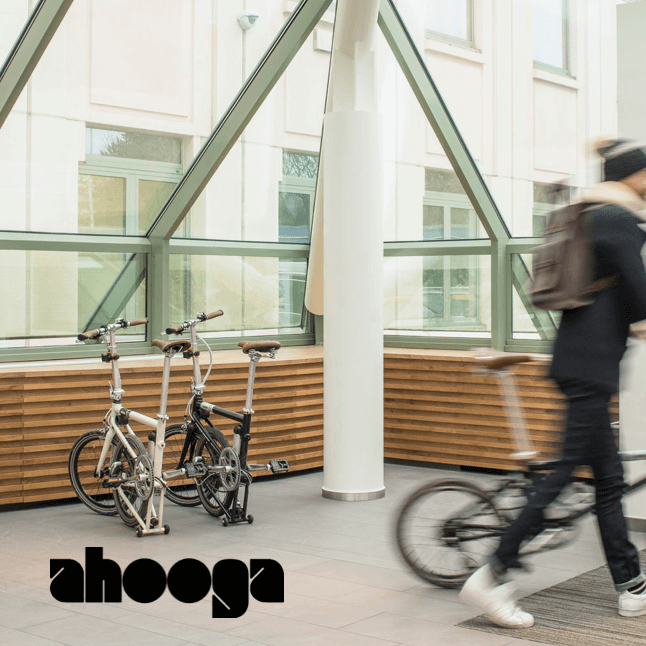 2021 Ahooga website